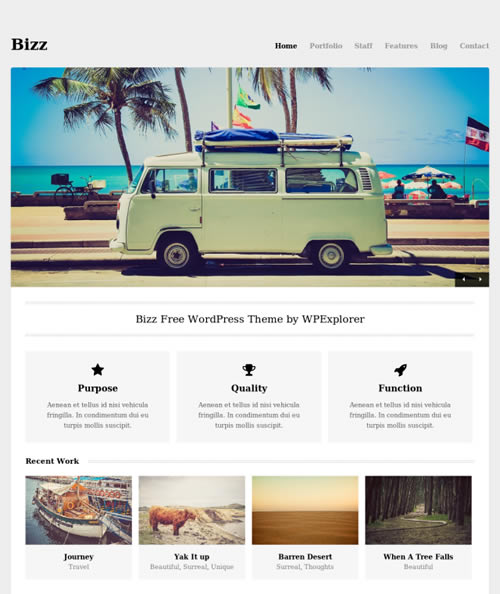 bizz-wordpress-theme