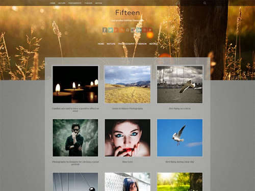 fiteen-wordpress-portfolio-theme