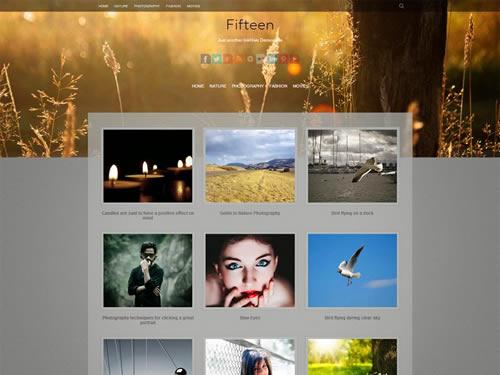 fiteen-wordpress-portfolio-theme